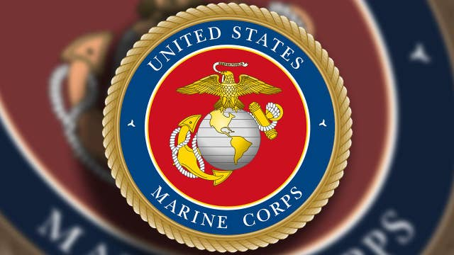 16 Marines arrested on charges ranging from human smuggling to drugs