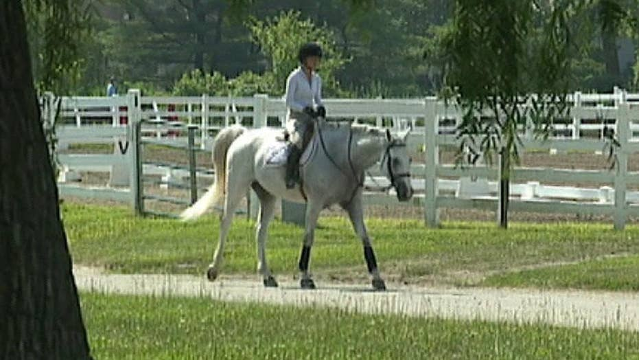 Horse therapy as PTSD treatment: Vets, experts report positive results
