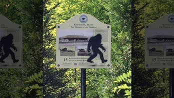 Gunshots fired in alleged Bigfoot encounter near Mammoth Cave campsite