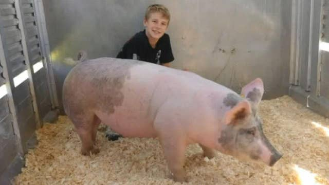 Boy raises more than $11K for St. Jude by auctioning hog thumbnail