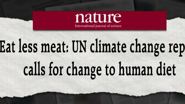 Eat less meat to save the planet, a new UN report warns
