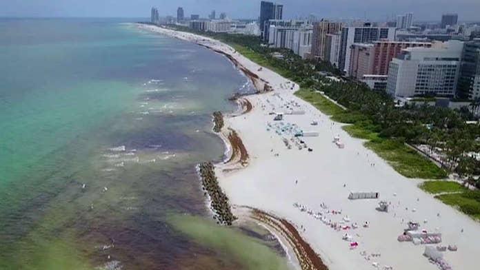 Tourist beach towns call seaweed invasion a 'crisis'
