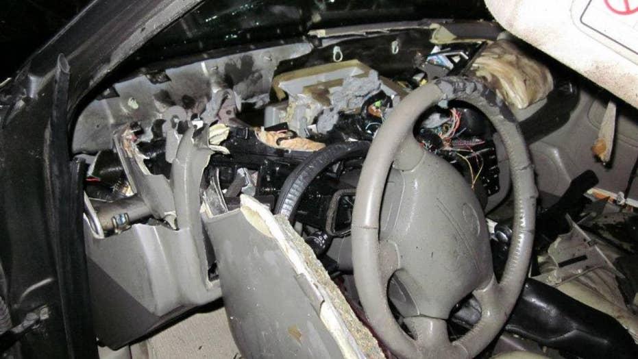 'Vandal' bear wrecks car after getting locked inside