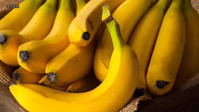 Banana fungus may create 'apocalyptic scenario' for most popular type of fruit