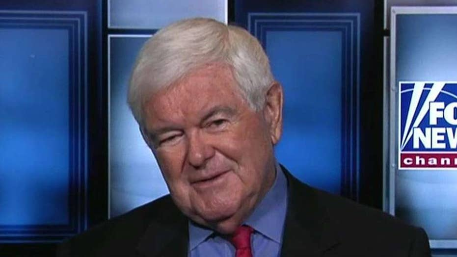Gingrich on Tlaib visiting Israel, Trump's New Hampshire rally, 2020 Democrat polls