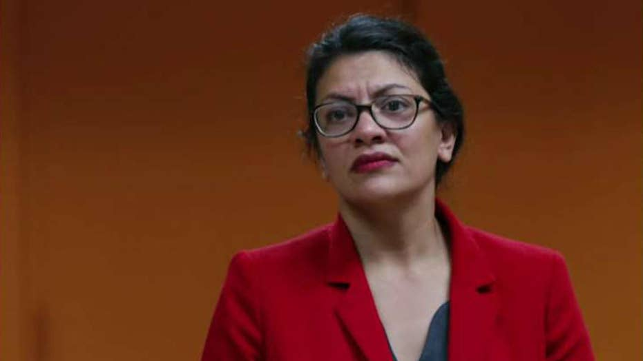 Tlaib forgoes trip to West Bank to see grandmother, blasts Israel for 'oppressive conditions'