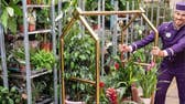 World's first 'plant hotel' opens in London