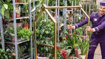 World鈥檚 first 'plant hotel' opens in London