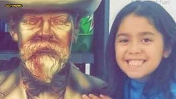 Detroit girl, 9, killed by dogs, owner in custody: police