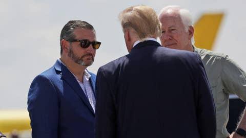 Sen. Cruz hits NYT as 'propaganda outlet by liberals'