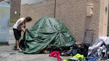 Geraldo Rivera, Dan Bongino react to US cities in crisis: 'Liberalism is a cancer'