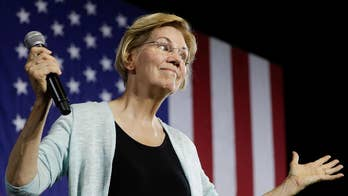 What would Warren's rollback of the 1994 crime bill look like?