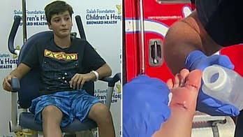 Shark bite leads to 17 stitches for Canadian boy, 11, swimming at Florida beach