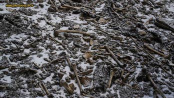 'Skeleton Lake' DNA discovery deepens mystery of human remains