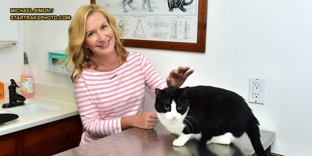 Office Actress Angela Kinsey Tells Why Her Character Loved Cats Fox News