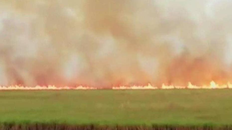 بولسونارو شرط معذرت خواهی ماکرون را به عنوان شرط پذیرش کمک های بین المللی برای مبارزه با آتش سوزی آمازون می طلبد