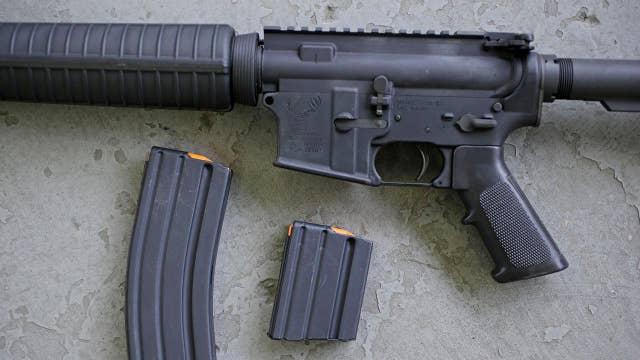 Congress set to return from recess as gun control debate heats up