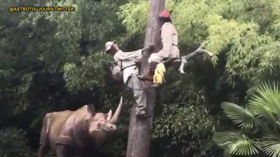 French theme park apologizes for 'racist' safari ride