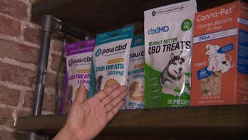 Manufacturers claim CBD pet products can ease anxiety, osteoarthritis and pain in four-legged friends