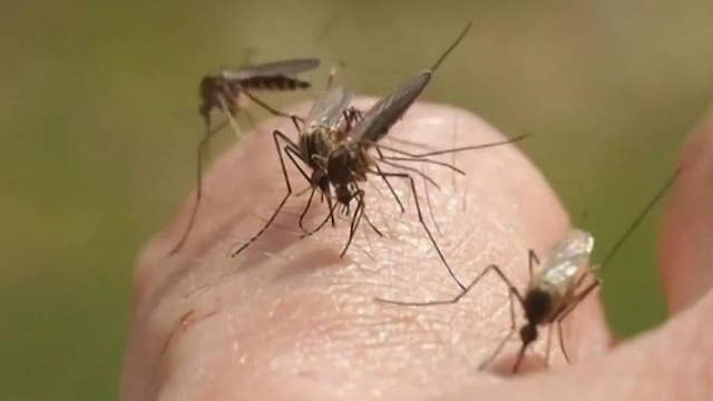 Rare mosquito-borne illness responsible for at least five deaths, 21 illnesses in six states