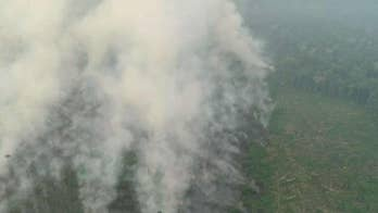 Brazilian govt. criticized for Amazon fire response