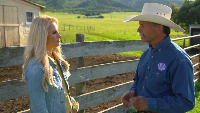Tomi Lahren's personal plea to the president: Save American ranchers