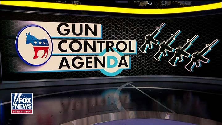 Dana Loesch reacts to 2020 Democrats' extreme positions on gun control