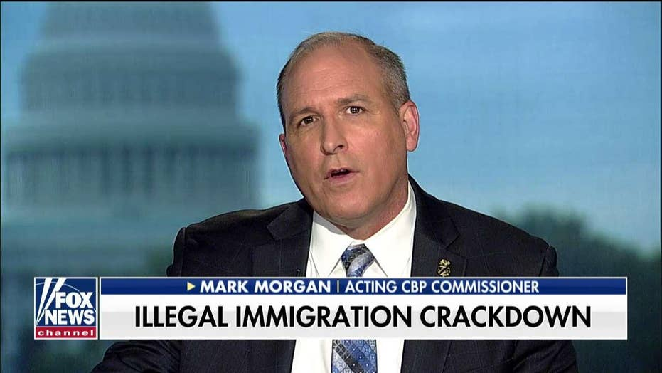 Acting CBP Commissioner Mark Morgan slams judicial activism after federal judge rules against border emergency