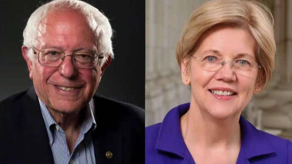 Bernie Sanders accuses Elizabeth Warren of being a 'capitalist'