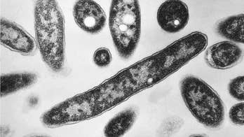 Officials: Legionnaires' disease outbreak linked to North Carolina state fair kills 3rd person