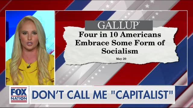 """""""We are going to wake up to a living nightmare: Tomi Lahren warns of a Sanders presidency"""