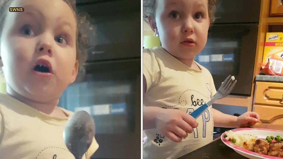 3-year-old's reaction to where sausages come from goes viral