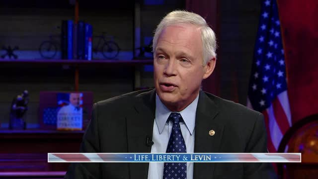 Ron Johnson says media leaving unanswered questions over Ukraine