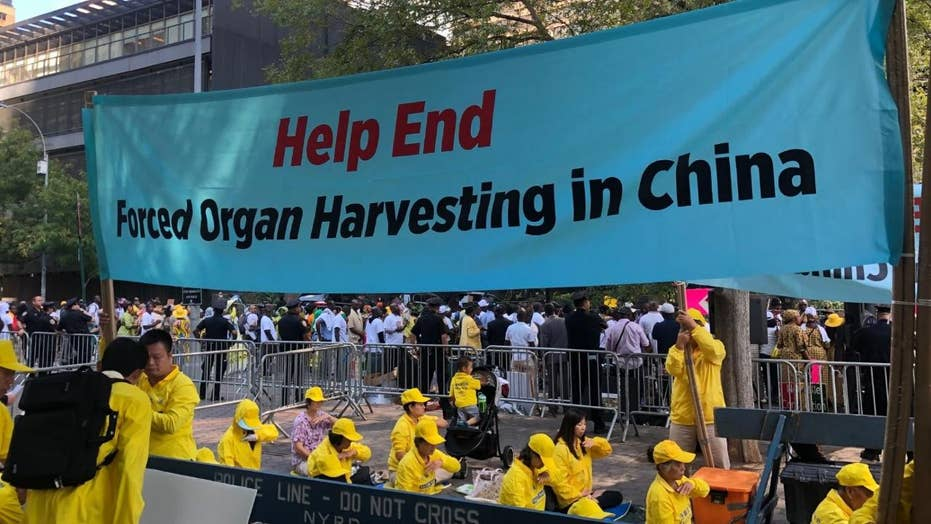 China's state-sanctioned organ harvesting victims speak out