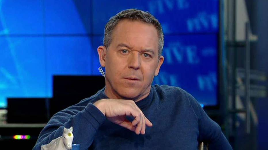 Gutfeld on the Tulsi and Hillary battle for America