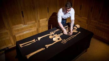500-year-old human remains found in the Tower of London