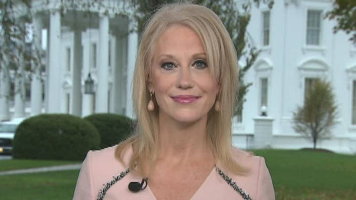 Conway on impeachment: You either have the votes or you don't, and Democrats don't have the votes