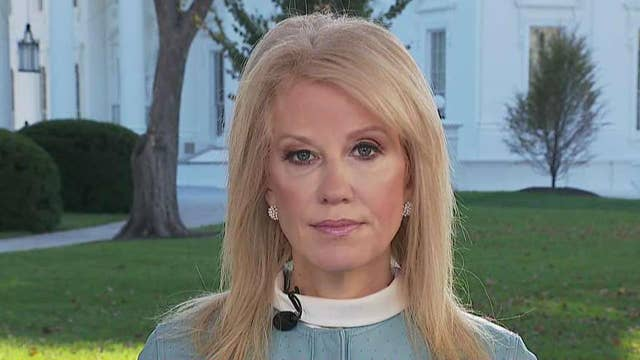 Conway talks Trump's offer to wage 'war' on Mexican drug cartels, transcripts from impeachment probe