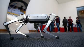 MIT's Cheetah robots can now play soccer