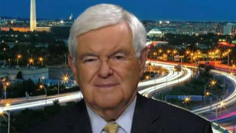 Gingrich: Democrats have pathological need to destroy Trump