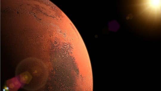 University professor believes he's found insect-like life forms on Mars