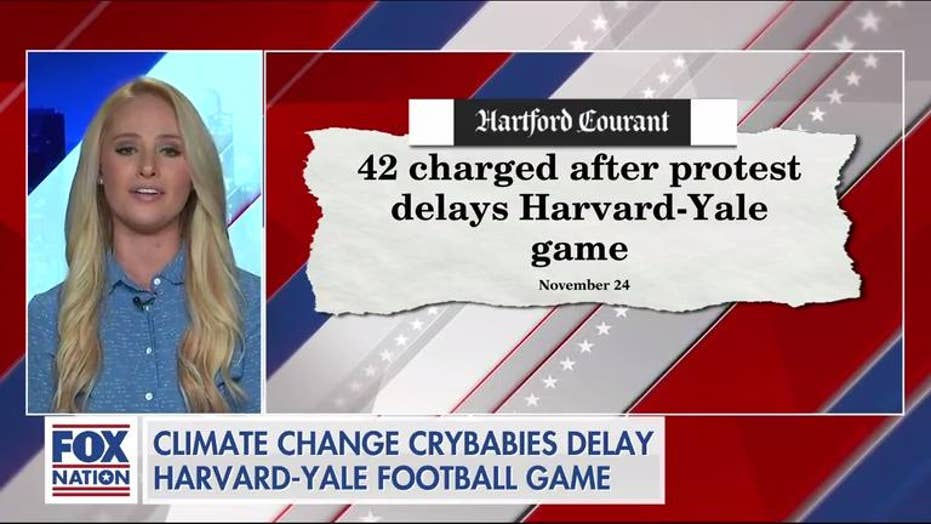Tomi Lahren rips climate protesters' latest 'tantrum' during Harvard-Yale game: 'I'm sick and tired of the crybabies'