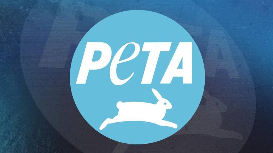 PETA's top controversies