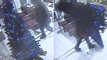 Brazen thief steals Christmas tree from sheriff's office in Oklahoma