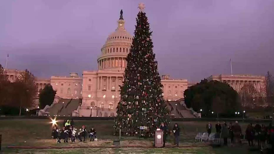 2019 Capitol Christmas tree lighting ceremony