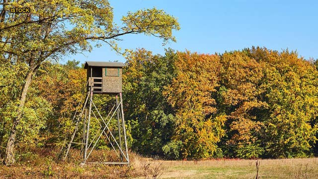 Michigan hunter intentionally sabotaged brother's hunting stands with deer repellent