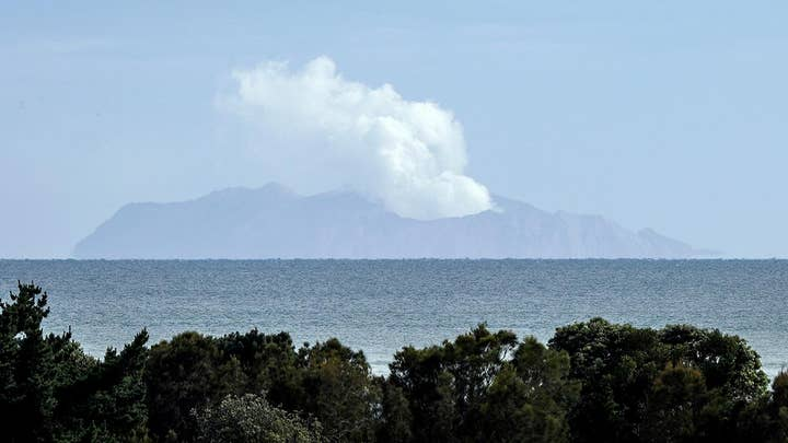 Increased volcanic activity thwarts recovery efforts on New Zealand's White Island