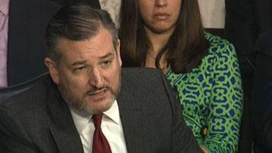 Ted Cruz on spying: 'This wasn't Jason Bourne. This was Beavis and Butthead.'