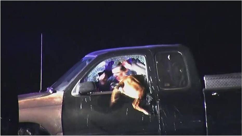 K-9 cop flies through shattered vehicle window to make arrest
