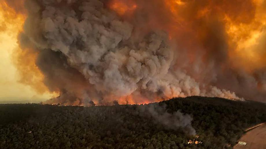 Australia wildfires 'killed or displaced' nearly 3 billion animals, declared among 'worst wildlife disasters' in history